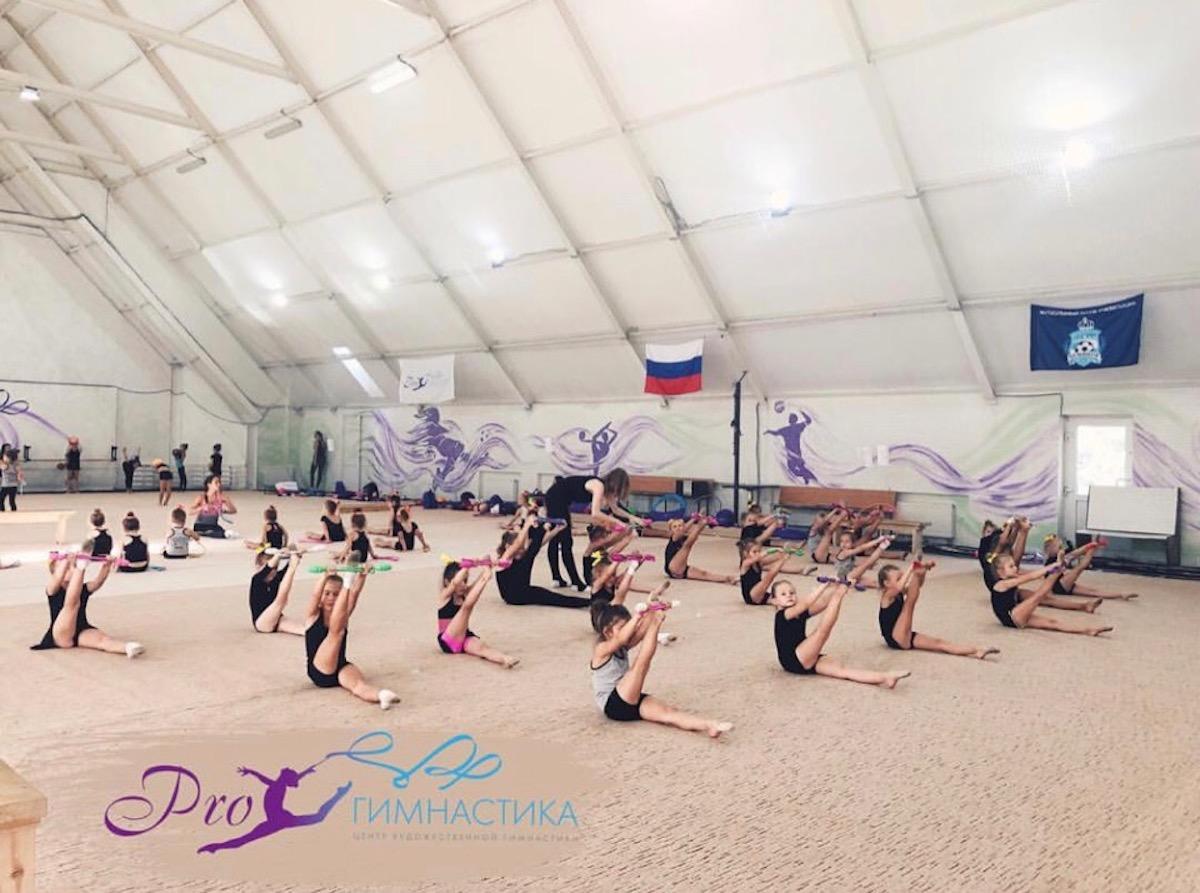© pro-gymnastics.ru